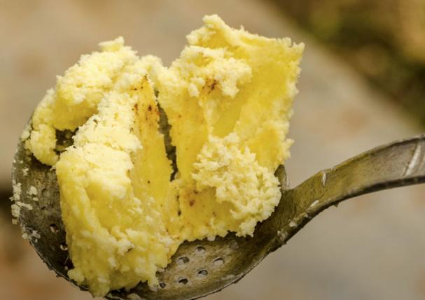 Le Karité ou L'arbre à beurre